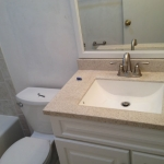 The Basic Bathroom Co. - remodeled full bathroom with bathtub-shower combination - complete - April 2014