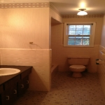 The Basic Bathroom Co. - remodeled full bathroom with bathtub-shower combination - before - June 2014