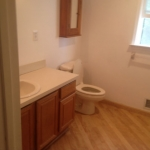 The Basic Bathroom Co. - remodeled full bathroom with bathtub-shower combination - before - August 2014